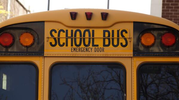 back-bus-education-159658